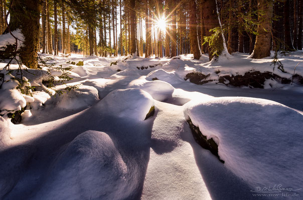"""Winter Wonderland"" - Harz, Germany"