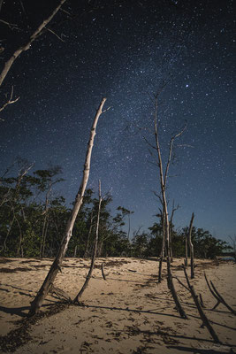 Reaching for the stars - Cayo Levisa, Cuba