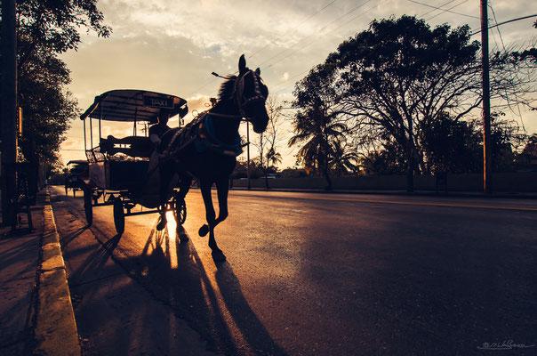 Common transportation.
