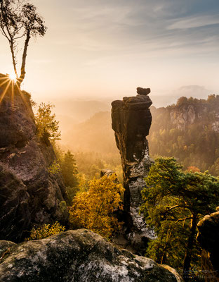 """Stand Tall"" - Saxon Switzerland, Germany"