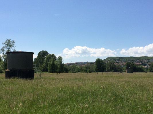A 2 km de La Villa Victoria Auvergne, une belle balade au bord de l'Allier.