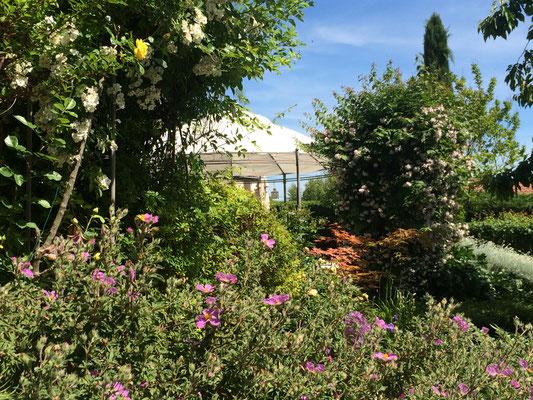 Vue derrière la tonnelle de la piscine du jardin des chambres d'hôtes La Villa Victoria Auvergne.