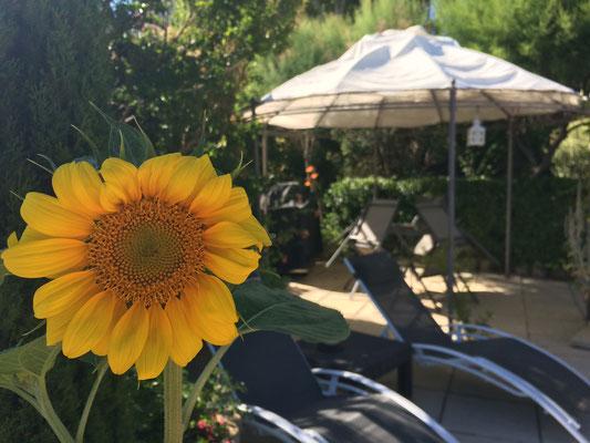 Sur la terrasse de la piscine des chambres d'hôtes de La Villa Victoria Auvergne