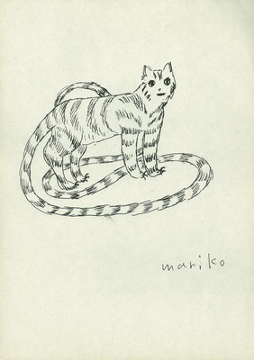 猫 pen 2000-2004/25×17.2