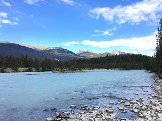 Athabasca River – was soll man dazu noch sagen?