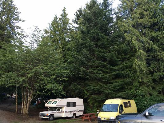 Der 1. Stellplatz auf Cumberland Lake Park Campground