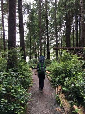 Vorm Einchecken auf dem Campground wird noch schnell ein erster Trail absolviert.