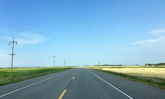 Die Standard-Ansicht der Yellowhead Route.