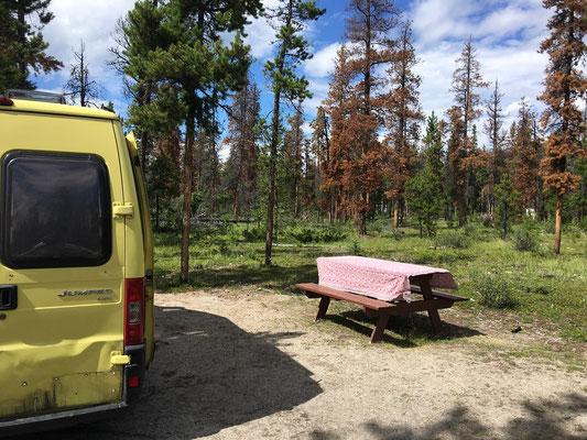 Wabasso Campground – eine weitere Wald-Wohnung.