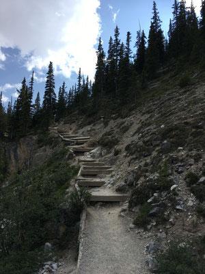 Doch es müssen nach 1,5 Stunden Wanderung noch diese Stufen überwunden werden.