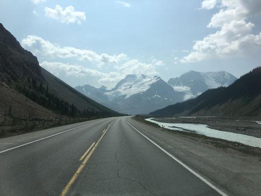 … auf dem Weg zum Athabasca Glacier.