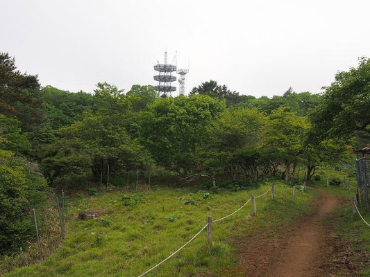 NTT無線局