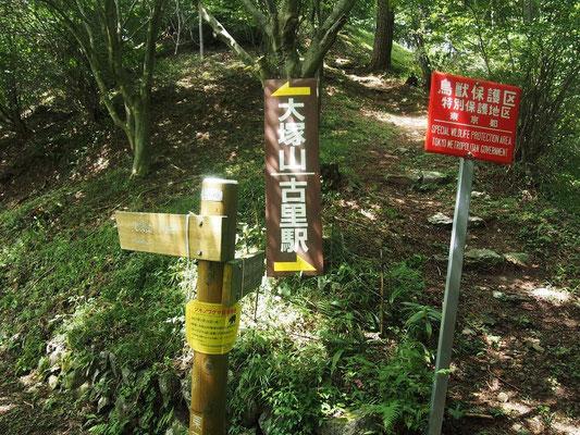分岐から大塚山へ向かう