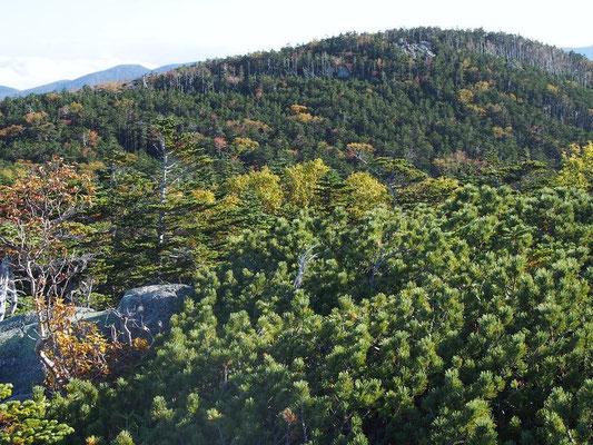 国師ヶ岳山頂岩場に人影が見えた