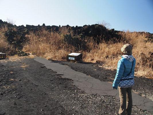 1986年の噴火で出た溶岩流