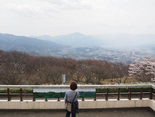 正面に武甲山