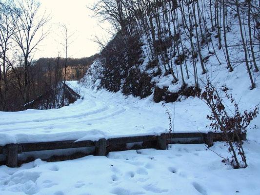 林道を突っ切ったところ