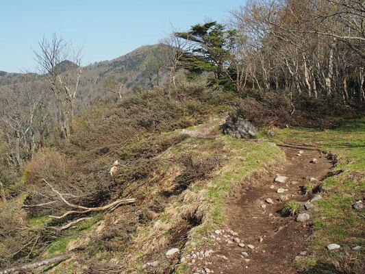 正面の山が釈迦ヶ岳かな?