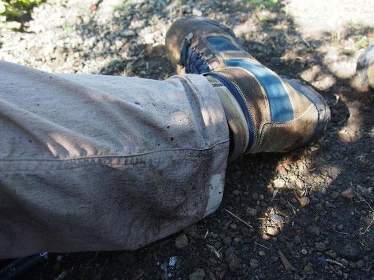 笹の葉についた雫で腿から下はビッショリ