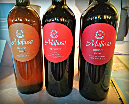Vinoi Firenze vino naturale. Etesiaca itinerari di vino blog