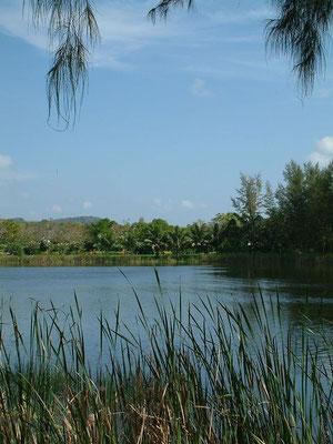 Phuket - Laguna -