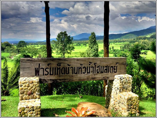 Baan Huanam Mushroom Farm - Sila Laeng - Pua District - Nan Province