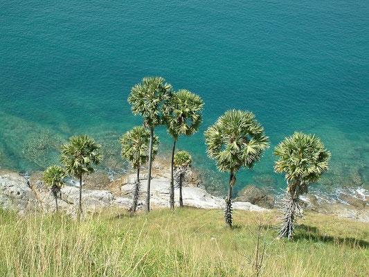 Phuket - South -
