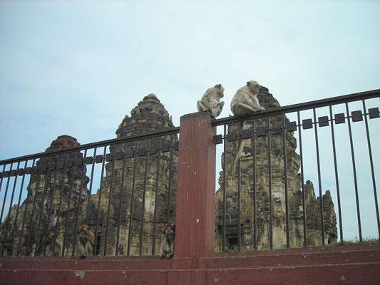 Lopburi - Phra Prang Sam Yod -