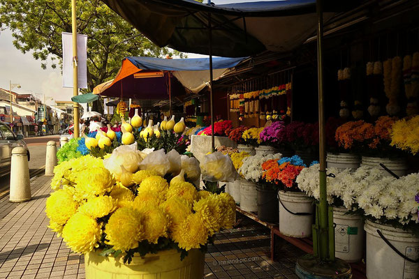 Old Quarter - George Town - Penang - Malaysia - April 2017