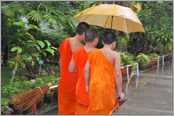 Monks At Wat Wang Chang - Chiang Rai