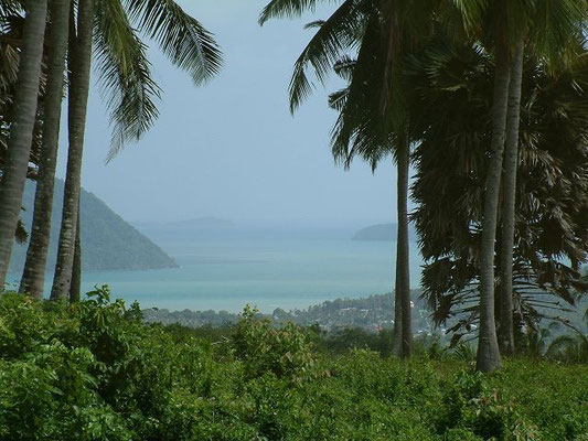 Phuket - Chalong Bay - View from the Big Buddha Road
