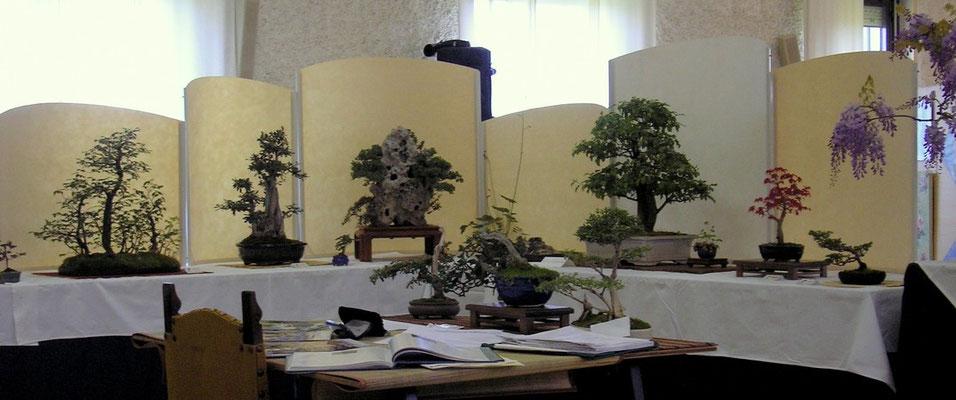 Cornuda 2007 Panoramica
