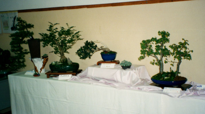 Ottobre 1998, Segusino