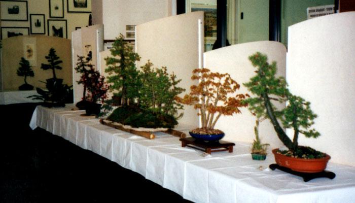 Cornuda 2003