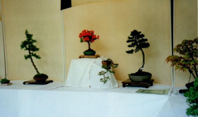 2002 Crocetta, Villa Ancillotto