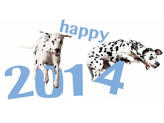 wir wünschen einen tollen Sprung ins 2014