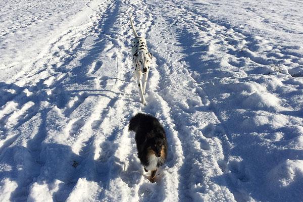 Winterspaziergang im Januar