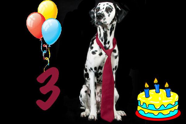 13. April 2014: Eliza wird schon 3 Jahre alt