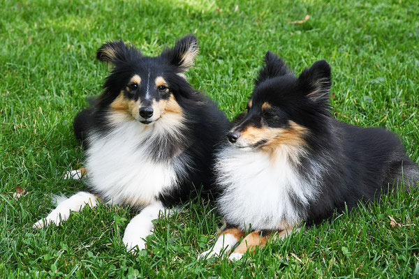 Mia und Yumi