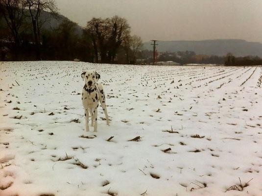 siehst du mich im Schnee überhaupt?