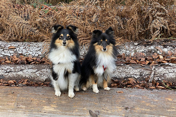 Mia und Yumi im Dezember