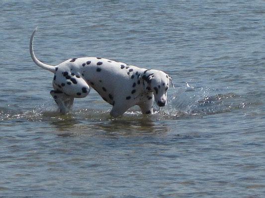 brrr, das Wasser ist schon ein bisschen frisch