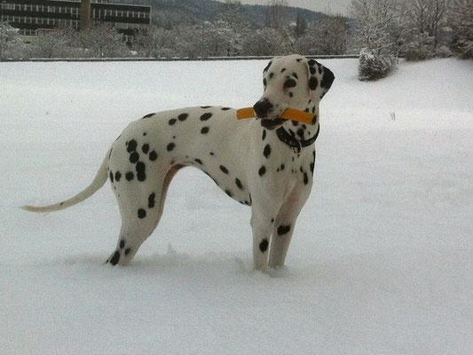 Spaziergang im Schnee, Dezember