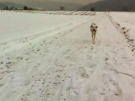 Rennen im Schnee macht Spass