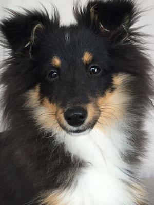 5 Monate alt