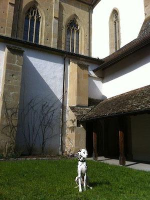 Weiterbildung im Kloster Kappel - und ich war dabei