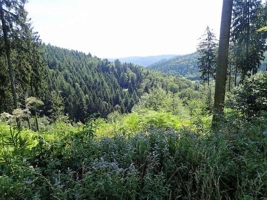 schöner Odenwald
