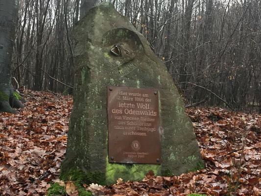 Denkmal des letzten Wolfes im Odenwald