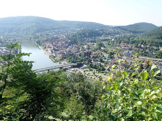 Blick auf die Friedensbrücke in Neckargemünd