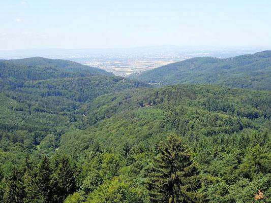 Blick in die Rheinebene mit dem Pfälzer Wald